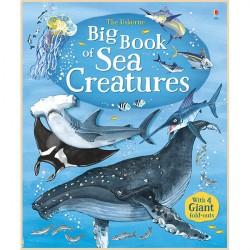 Детская книга Usborne Big Book of Sea Creatures (Морские обитатели)