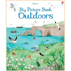 Детская книга Usborne Big Picture Book of Outdoors
