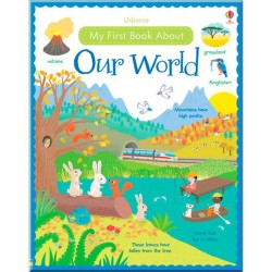 Детская книга Usborne My First Book About our World