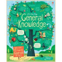 Детская познавательная книга Usborne Lift-the-Flap General Knowledge