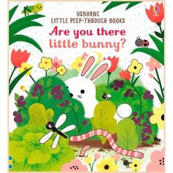 Детская книга с тактильными ощущениями Usborne Are You There Little Bunny?