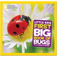 Детская книга First Big Book of Bugs (National Geographic Little Kid)